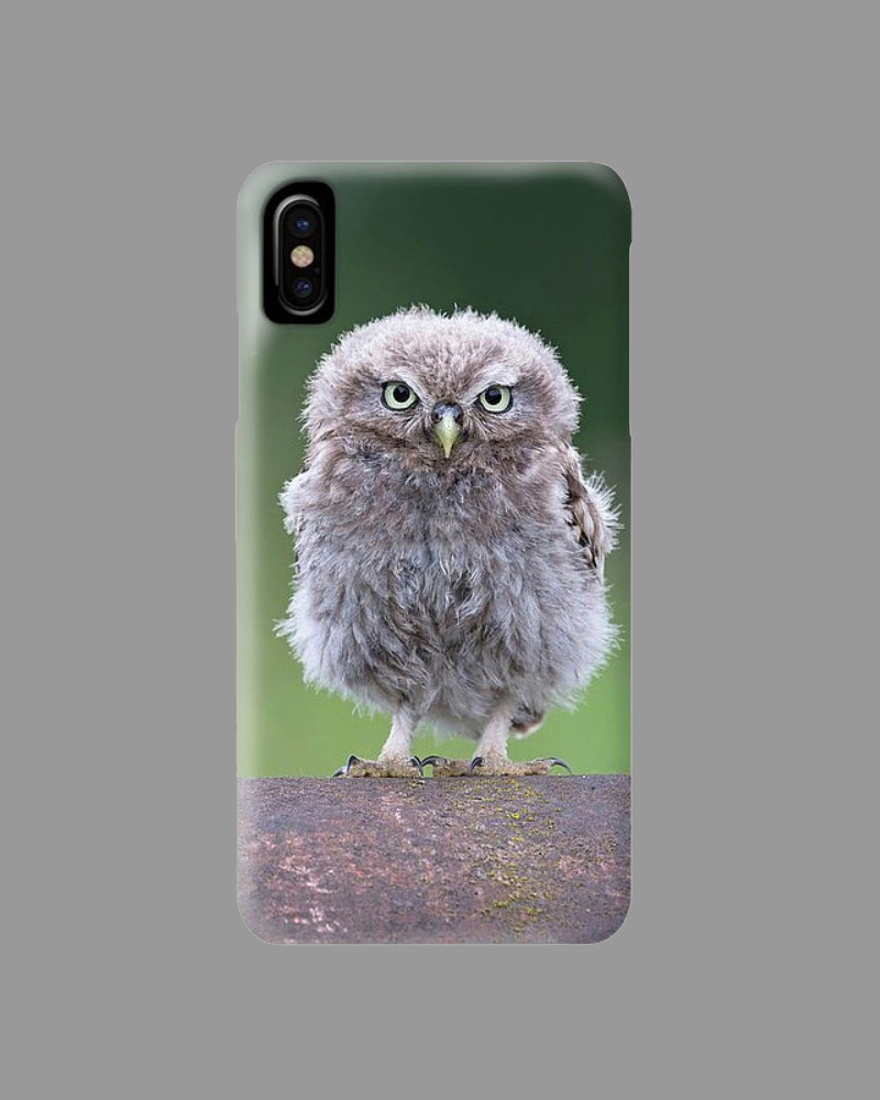 Online Shop - iPhone Cover